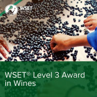 WSET Level 3 Wine practice questions and tips